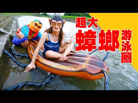 超噁!蟑螂游泳圈你敢坐嗎?
