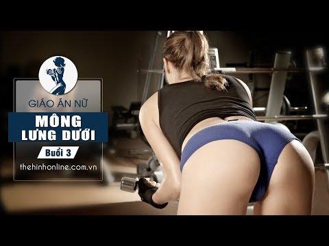 Thể hình Free weight nhập môn dành cho phái nữ - Buổi 3 - Lưng săn chắc dẻo dai Mông căng tròn