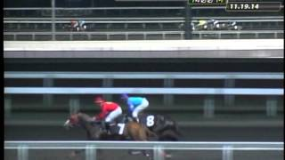 RACE 3 JULIANAS PET 11/24/2014