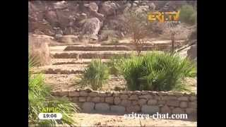 Eritrean Tigre News  6 May 2013 by Eritrea TV
