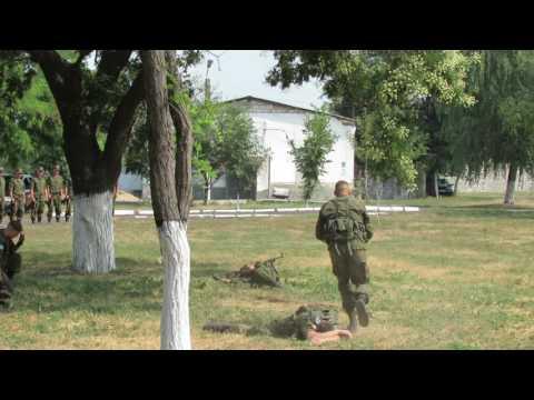 Миротворцы в Приднестровье (видео)