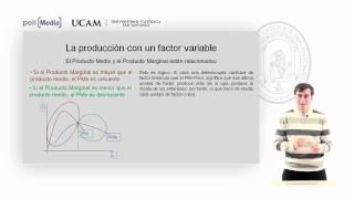Microeconomía II - La Tecnología De Producción (4) - Alfonso Rosa García