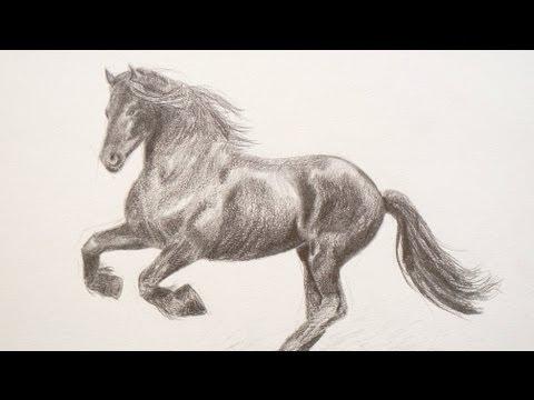 Cómo dibujar un caballo - Arte Divierte