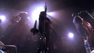 """FELOCHE """"Darwin avait raison"""" Live @ Les Bains-Douches - Lignières"""