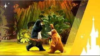 Disney La Forêt de l'Enchantement avec Nicolas (O2C)
