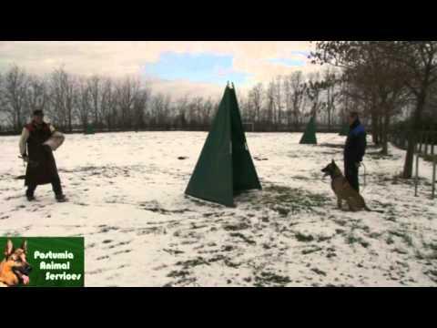 Sequenza di allenamento fasi esercizi di difesa, preparazione I.P.O.