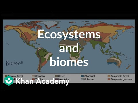 Ecosystems And Biomes Video Ecology Khan Academy