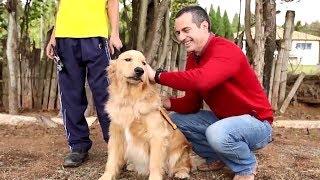 Programa Cão Guia - Visita Record