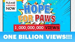 We did it!!!  ONE BILLION views of awareness on our Hope For Paws channel! by Hope For Paws