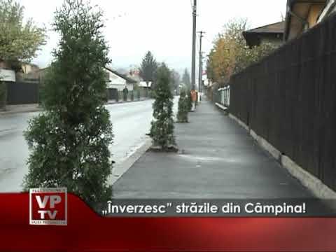 """""""Înverzesc"""" străzile din Câmpina!"""