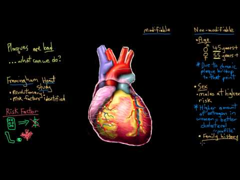 Khan Academy – Risk Factors for Coronary Artery Disease