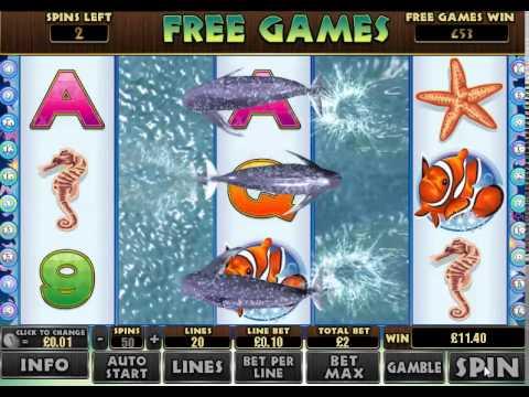 dolphin reef slot machine