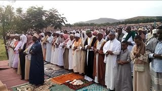 Ethiopia – Ramadan፦ dates fruit and Egyptian lanterns (fanous) | ረመዳን፥ ቴምር እና ፋኖስ