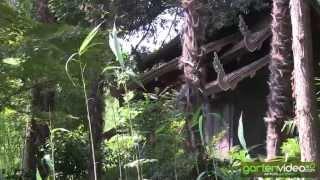 #1280 Parco Scherrer Morcote - das siamesische Teehaus
