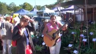 Roving Busker at Yandina Markets