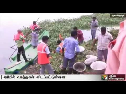 A-30-member-strong-team-would-be-formed-to-get-rid-of-insects-in-Korattur-lake-says-health-minister