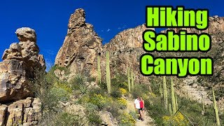 """Continuing our stay in the Phoenix area, we head to Eagle Eye RV Resort and hike the spectacular Sabino Canyon Recreation Area. We enjoy the tram ride up to the top of the canyon and exit at stop #9 for an awe inspiring hike with some incredible views. We enjoy the hot tub at the RV park after a long hike and we are loving our time in Arizona!Don't forget, we are """"totally"""" social so check out the links below :http://www.totally-trailer.comEmail totallytrailer@gmail.comFacebook: www.facebook.com/totallytrailerTwitter: @totallytrailerInstagram: totally_trailerMusic is found on epidemicsound.com""""Pumping Adrenaline 3"""" Composer: Niklas Gustavsson*****List of items that appear in our videos:weBoost Connect 4G Cell Phone Signal Boosterhttp://amzn.to/2i5NpN0Amped Wireless High Power Wireless-N 600mW Smart Repeater and Range Extender (SR10000)http://amzn.to/2hdppmy100 Watt 12 Volt Monocrystalline Lightweight Solar Panelhttp://amzn.to/2hUKLJdGo Power! GP-PWM-30 30 Amp Solar Regulatorhttp://amzn.to/2hUHo53RV Flag Pole Kit Motorhome Flag Kit by FlagPole Buddy 22 Feethttp://amzn.to/2hUKia9Samlex PST-2000-24 PST Series Pure Sine Wave DC-AC Power Inverter, 2000W Continuos Power Outputhttp://amzn.to/2nNlwcbSamlex Solar RC-200 PST Series Remote Control for 1500-2000 Watt Modelshttp://amzn.to/2p42T3XDual USB Charger Socket Power Outlethttp://amzn.to/2nNhAbd12V Blue LED Digital Car/Auto Voltmeter Motorcycle Battery Monitorhttp://amzn.to/2neh0apTrojan Trojan 6 Volt Battery T-105http://amzn.to/2p47sevSingle 6V Snap-Top Battery Box for Automotive, Marine, and RV Batteries*****Camera Gear used in this video:SanDisk Extreme 500 Portable SSD http://amzn.to/2hVs5sNWD 2TB Black My Passport Ultra Portable External Hard Drive - USB 3.0 http://amzn.to/2isw3GqSanDisk Ultra 32GB UHS-I/Class 10 Micro SDHC Memory Card With Adapterhttp://amzn.to/2iKReUsRode VideoMicro Compact On-Camera Microphonehttp://amzn.to/2isy3hRDJI 4K, UHD 7x Zoom Handheld 4K Camera Osmo+ Blackhttp://amzn.to/2hoaLO7DJI Osmo - I"""