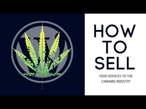 How to better sell website consulting to the cannabis industry Podcast
