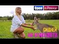Орел и решка На краю света - Австралия | Сидней