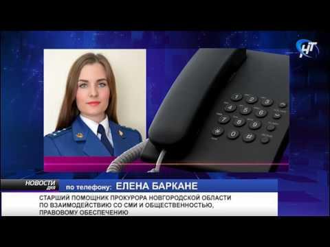 В отношении бывшего ректора Новгородского института развития образования Людмилы Старковой возбуждено уголовное дело
