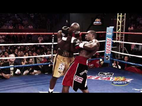 andre berto - highlights hd
