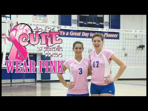 Volleyball's Dig for a Cure Game