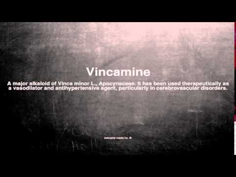 Medical vocabulary: What does Vincamine mean