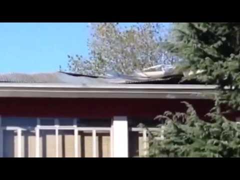 Il forte vento scoperchia il tetto della scuola