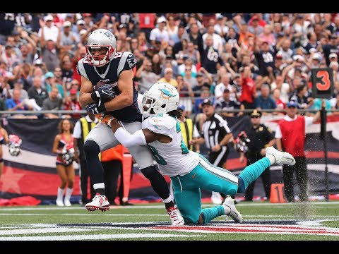 Amendola signs with Dolphins/J.Nelson Cut