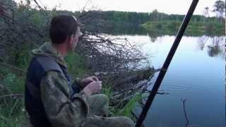 Ловля карася на озере Кривом.