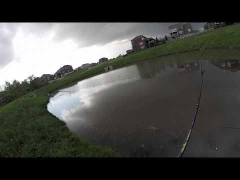 Gopro~ Rainy Pond Bass Fishing