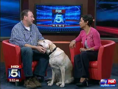 DENVER The Guilty Dog ON FOX DC 5 Www.ourguiltydog.com