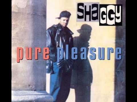 Tekst piosenki Shaggy - Lust po polsku