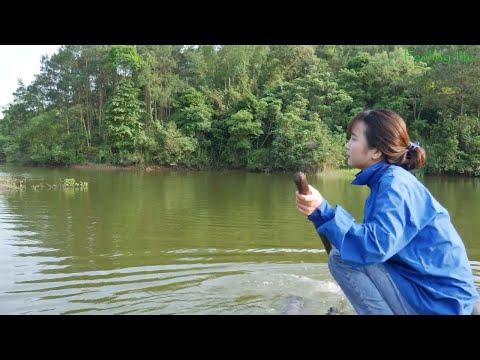 Chèo Bè Và Câu Cá Trên Sông