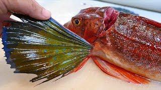 Video Японська їжа на вулиці - птах риба сашімі Окінава морепродукти Японія MP3, 3GP, MP4, WEBM, AVI, FLV Juli 2018