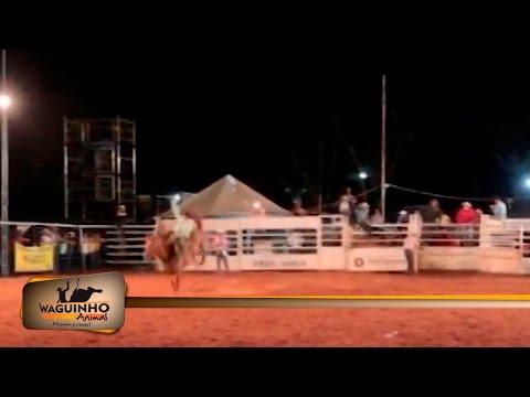 Waguinho Animal - Final Cutiano em III Rodeio de Equipes de Floreal 24/12/16 1