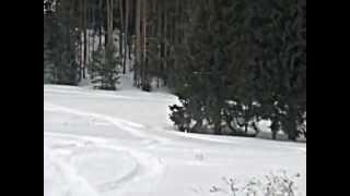 4. Ski-Doo SUMMIT X 154 800R E-TEC