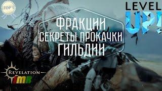 Revelation Online - путь новичка от А до Я. Секреты быстрой прокачки персонажа и застройка гильдии