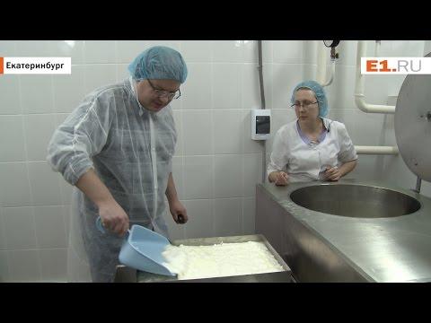 Репортаж из секретной лаборатории: уральский медный гигант учится варить сыр с плесенью