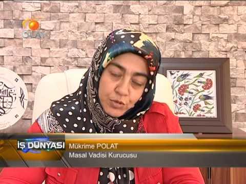 Bursa Olay TV