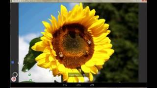 Digital Photo Frame Premium YouTube video