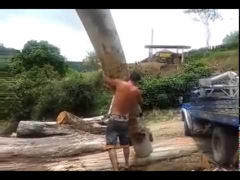 當看到這男人霸氣地「扛起超大樹幹」全場都尖叫太帥了!沒想到原來是…