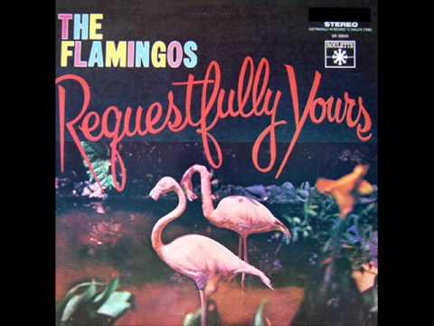 Tekst piosenki The Flamingos - Tenderly po polsku
