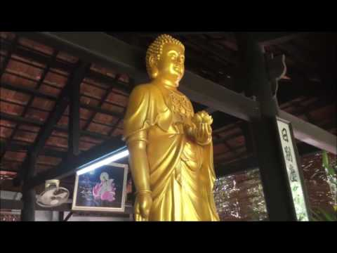 Phật Tử Từ Nhẫn và An Ngọc cúng dường Trai Tăng