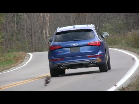 2015 Audi SQ5 Road Test and Review