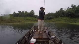 ตก-ปล่อย ปลาช่อนด้วยกบยาง เขื่อนเขาแหลม Catch and Release