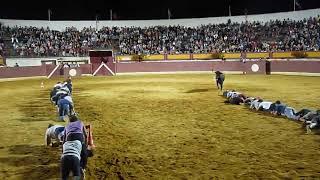 Самая безумная змейка по-испански
