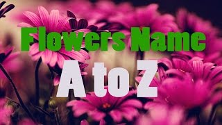Nonton Flowers Names For Kids A To Z   Bdkids Film Subtitle Indonesia Streaming Movie Download