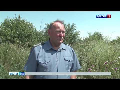 Специалисты Россельхознадзора провели обследование заброшенного сада в Ростовской области