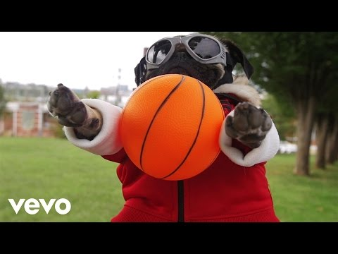 Irresistible Starring Doug the Pug [Feat. Demi Lovato]